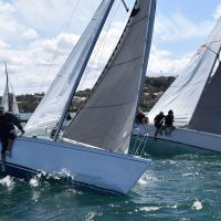 2 Rock Solid approaching the start on Sydney Harbour 2017 10 07 0144